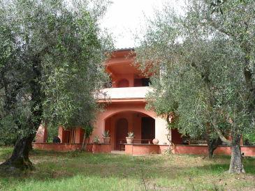 Ferienwohnung Oliveto