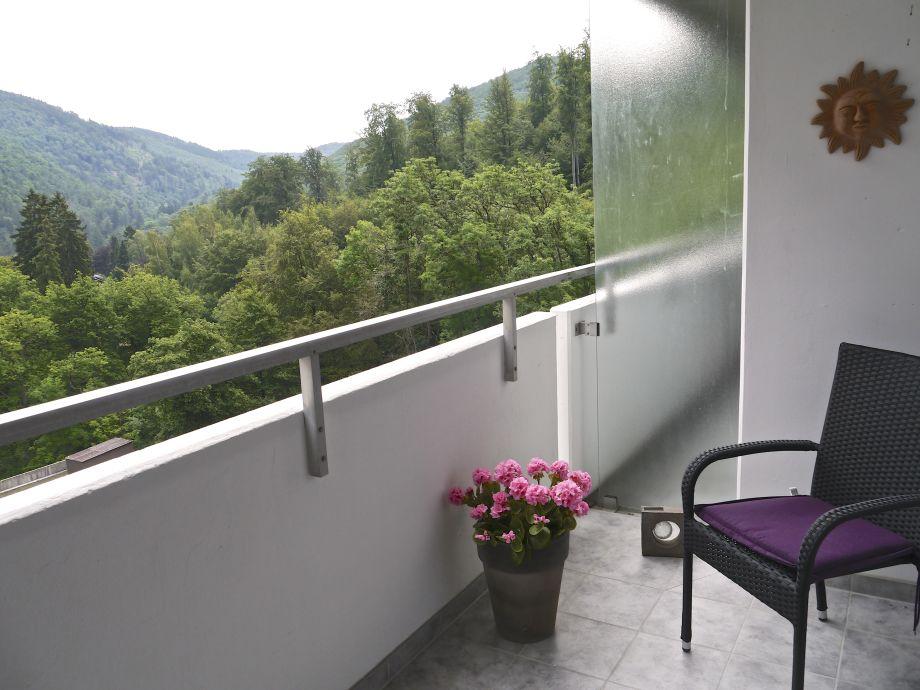 ferienwohnung trend schwimmbad sauna wlan niedersachsen harz brocken bad harzburg frau. Black Bedroom Furniture Sets. Home Design Ideas