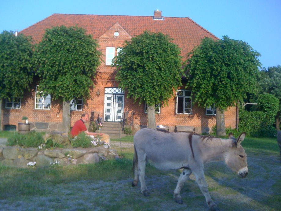 Vor dem Haus mit Esel Jenny
