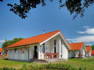Ferienhaus Kleiner-Belt-Haus Typ A