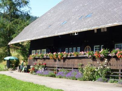 Kammbühlhof
