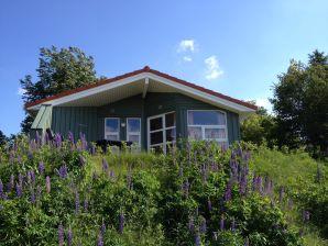 Ferienhaus Marina Hülsen - Skipper-Lodge Süd