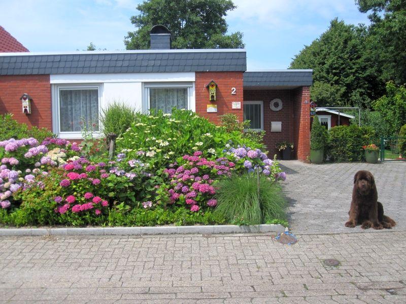 Ferienwohnung Haus Schwalbe