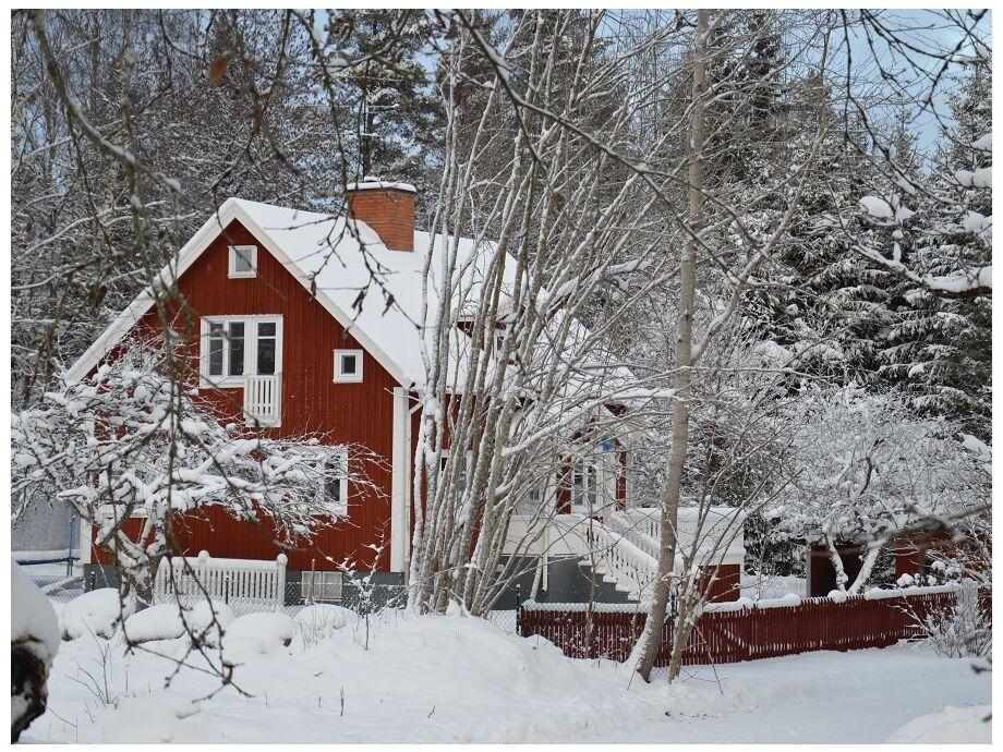 Öståker im Winter