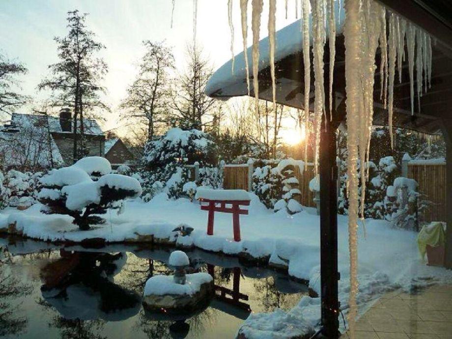 Ob wir noch einmal so einen Winter erleben?
