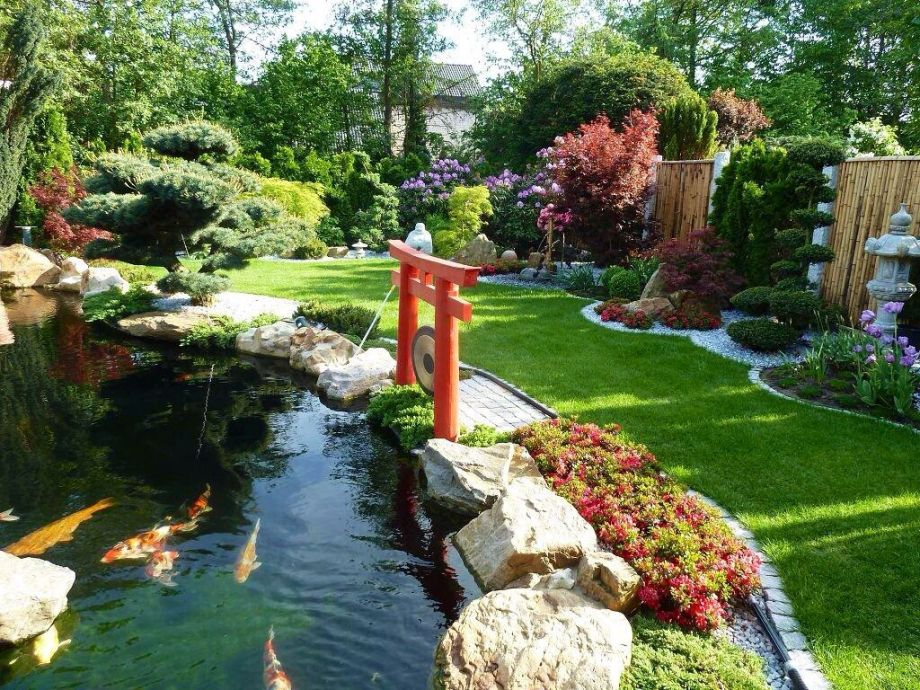 Have a look at our blossoming garden Japan!