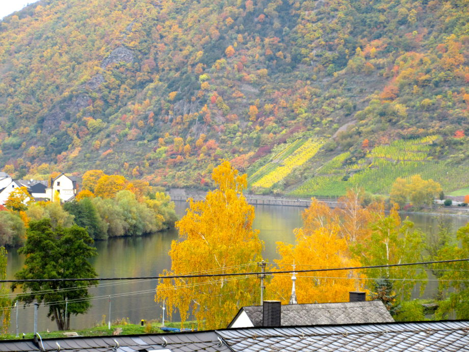 Aussicht vom Balkon ins Moseltal