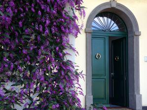 Holiday apartment Villa Crocefisso Verde