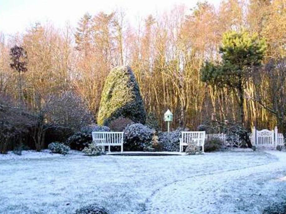 Unser Garten im Dezember