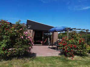 Ferienhaus De Blenck 1 in Callantsoog