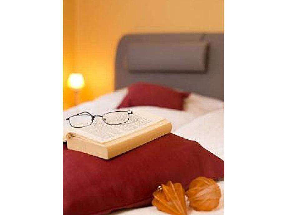 Arbeitsplatz Im Wohnzimmer Oder Schlafzimmer : Lesen Sie ein Buch im ...