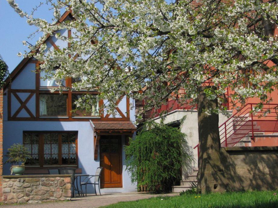 das Ferienhaus im Frühling