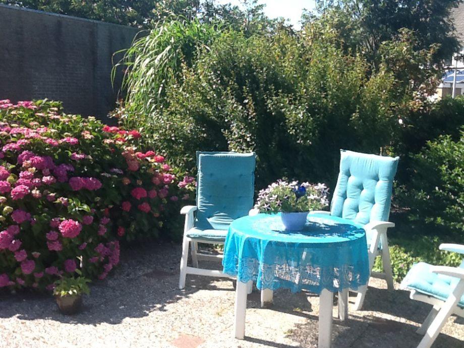 Garten in Sommer