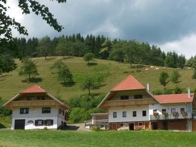 Stinneshof