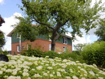 Ferienhaus Knut's Huus