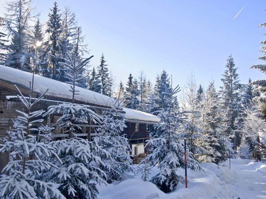 Ferienhaus im Winterwald