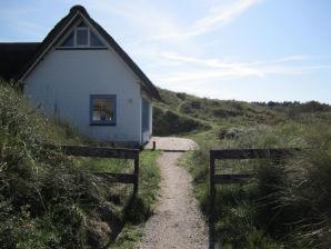 Ferienhaus in die Dunen