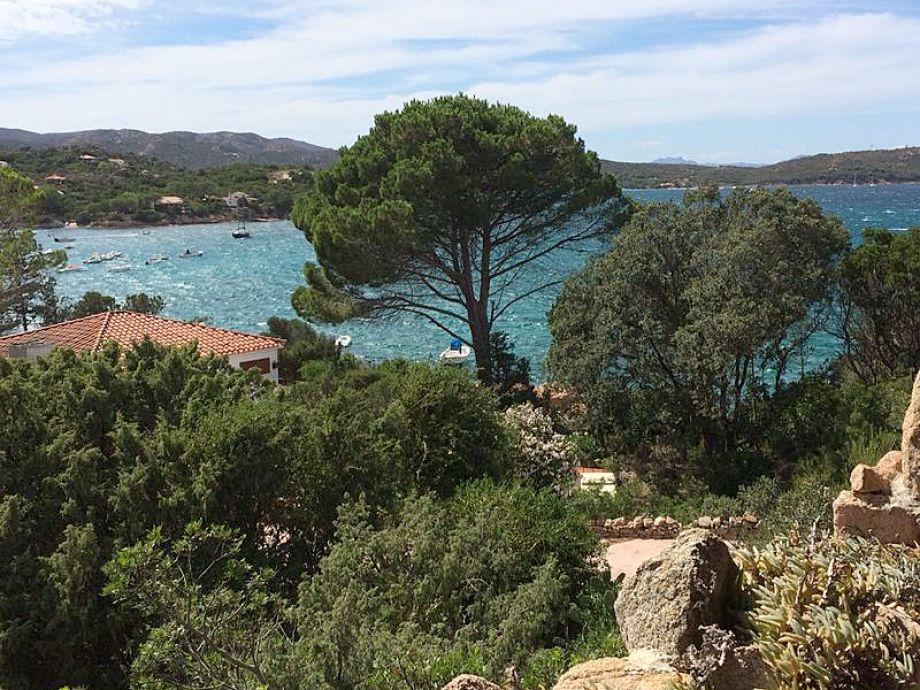 Blick von der großen Terrasse Richtung Cala Girgolu