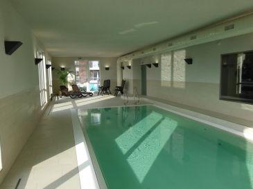 Modernes haus mit pool in deutschland  Ferienhäuser & Ferienwohnungen mit Pool in Deutschland ...