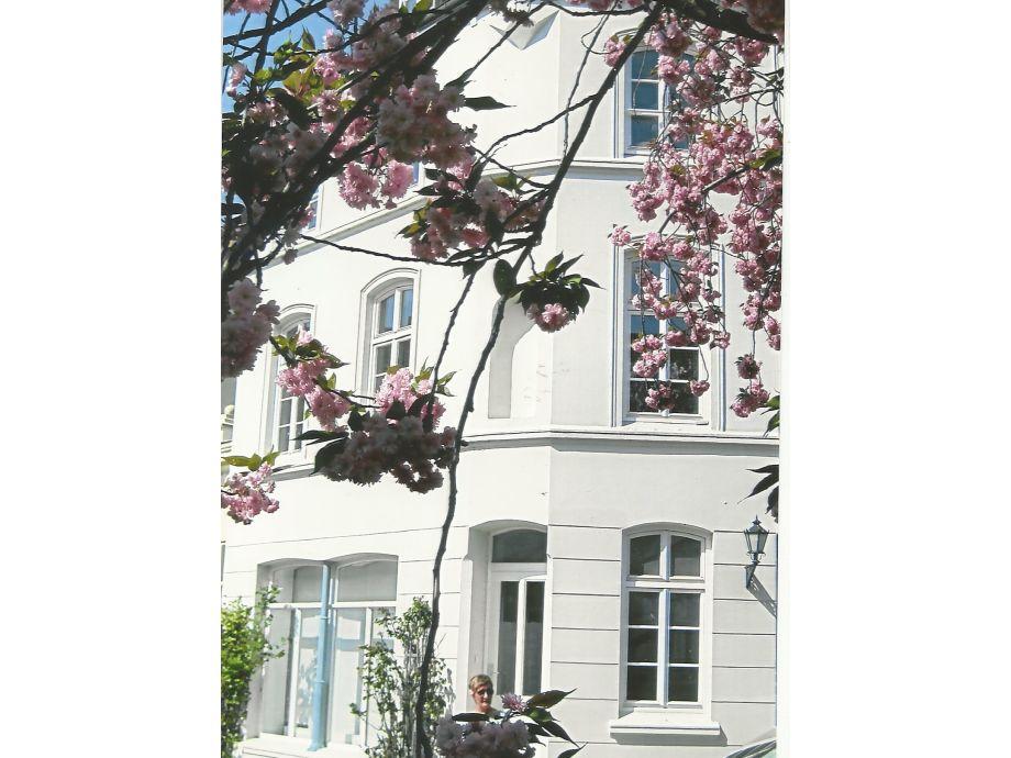 ferienwohnung altstadtsonne nordwestmecklenburg familie molthan. Black Bedroom Furniture Sets. Home Design Ideas