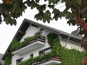 Ferienwohnung Appartementhaus Wiesental