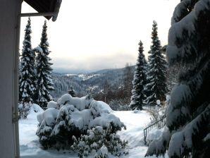 Ferienwohnung Berberich - Triberg