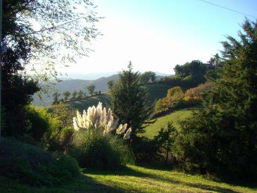 Kleines Ferienhaus - Biohof Le Torricelle