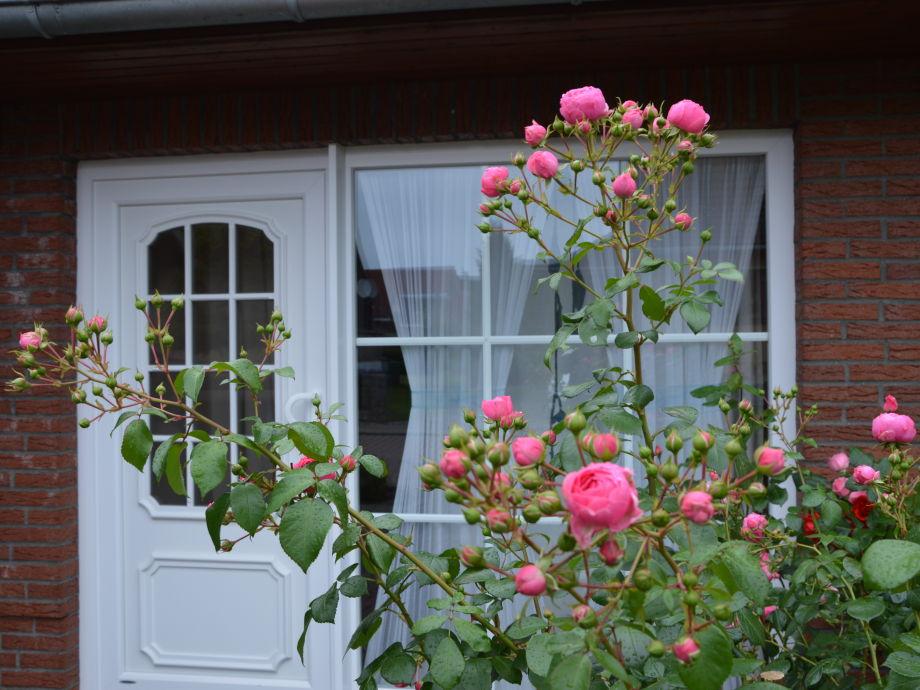 Außenansicht Ferienwohnung /Eingangstür