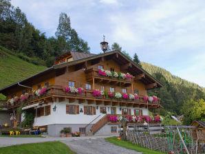 Bauernhof Fuxmoos  - Schönes Apartment