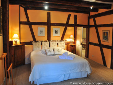 Holiday apartment RIESLING - Beautiful apartment with 2 BR in historical village Riquewihr