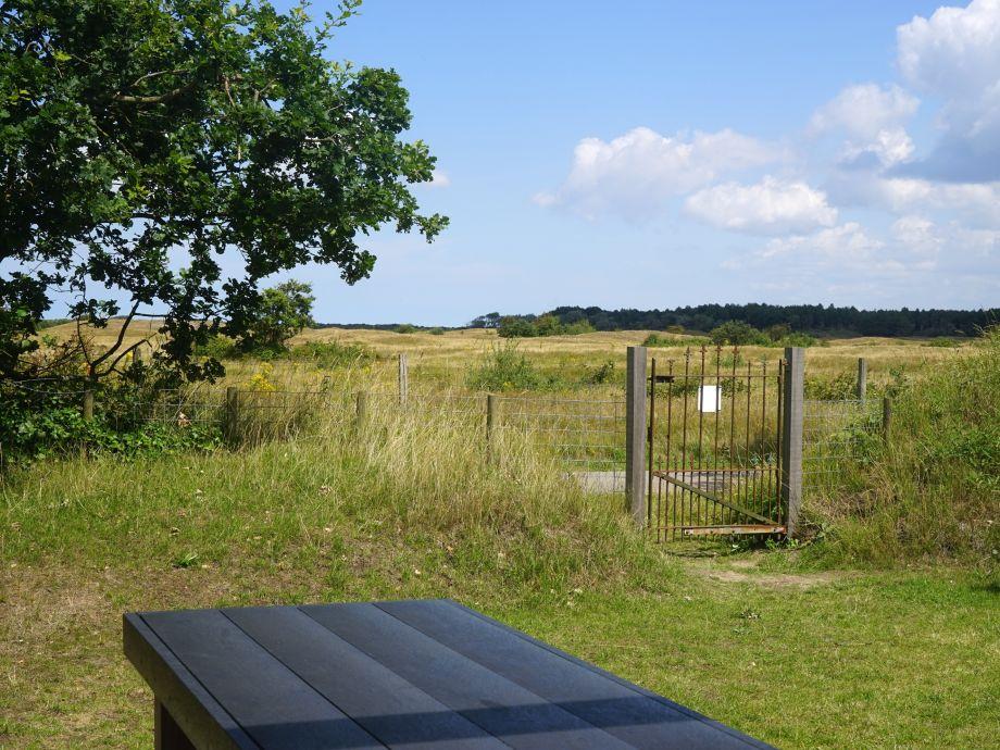 Ausblick in Naturschutzgebiet vom hinteren Garten