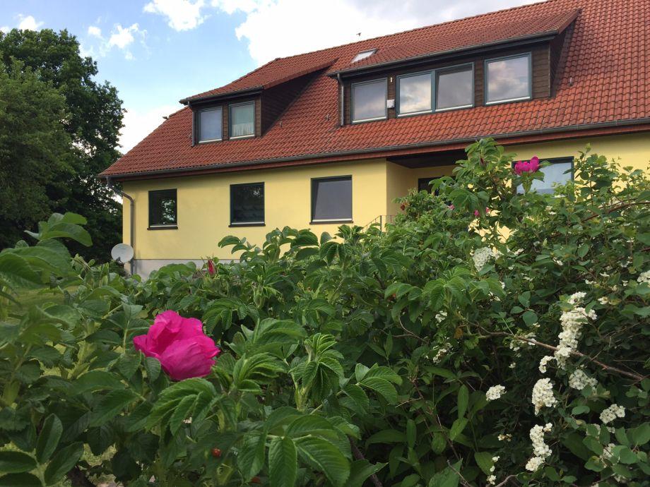 Das Naturferienhaus im schönen Wendhof
