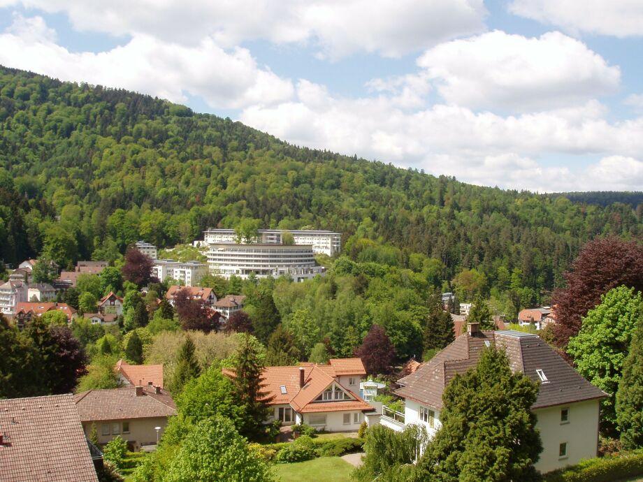 Blick von Balkon
