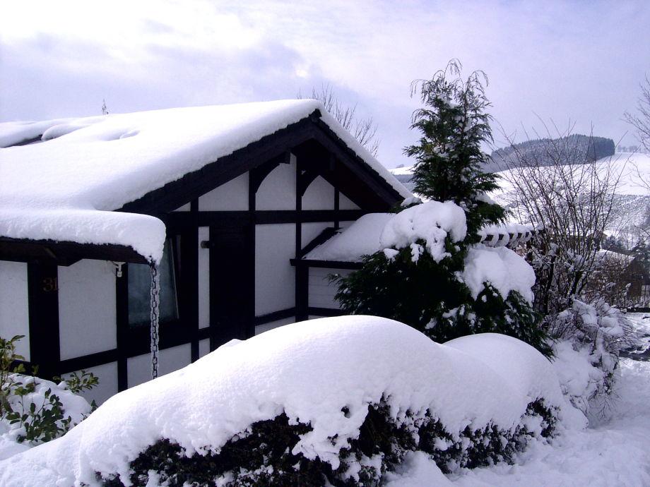 Ferienhaus Hennesee im Schnee