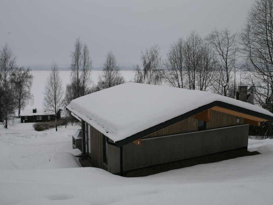 Bellevue Winter