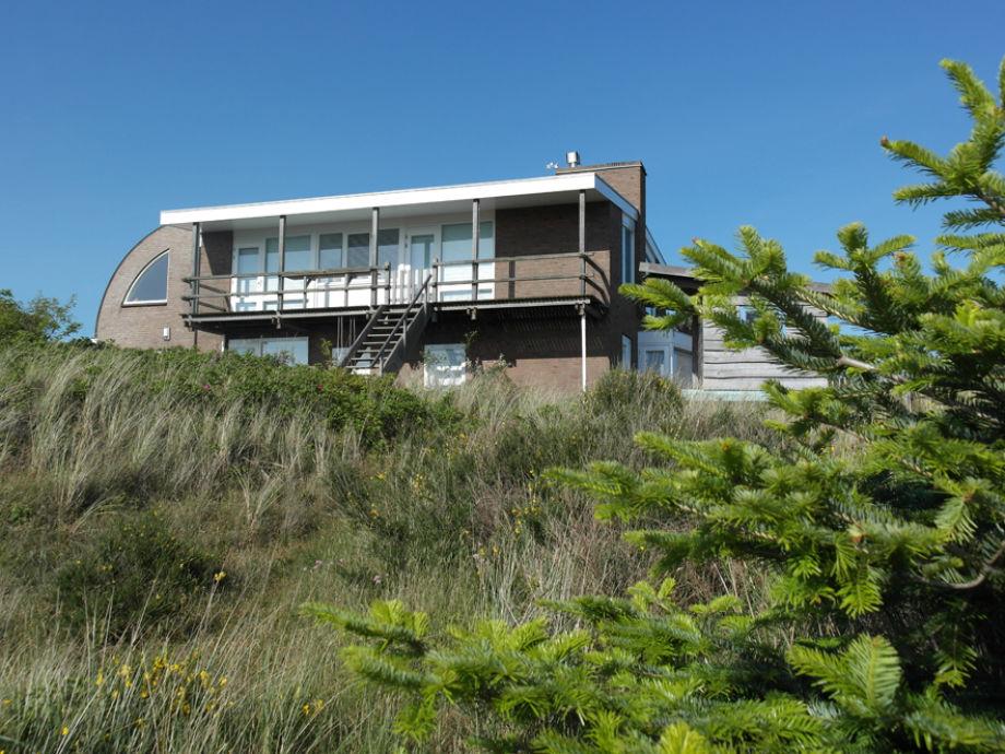 Blick auf die Villa im Grünen