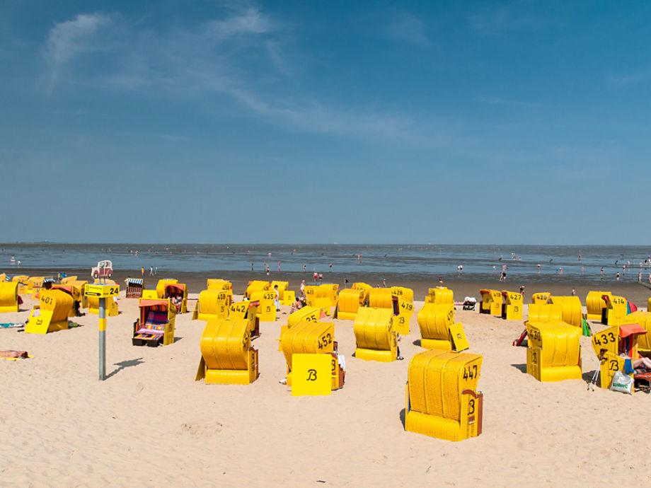 Neu ab 2017: Inklusive Strandkorb während der Saison