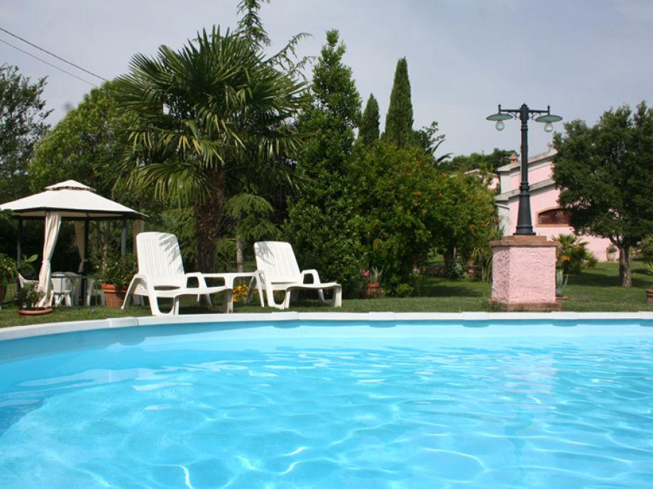 Der schöne ovale Pool im Garten