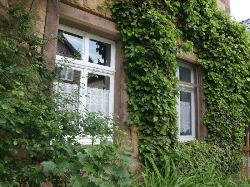 Ferienhaus mit Ambiente