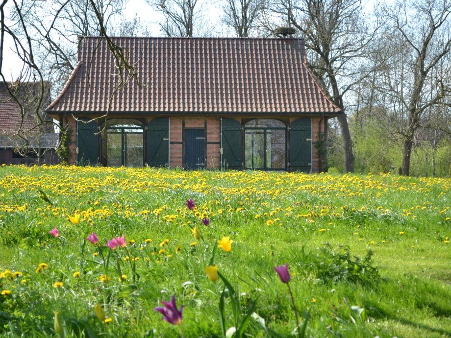 Frühling auf dem Hof