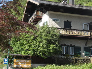 Apartment Haus Harrer Zell am See