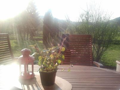 Ferienhaus-Eder-Refugium