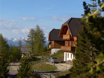 Ferienhaus Almhaus Brummer