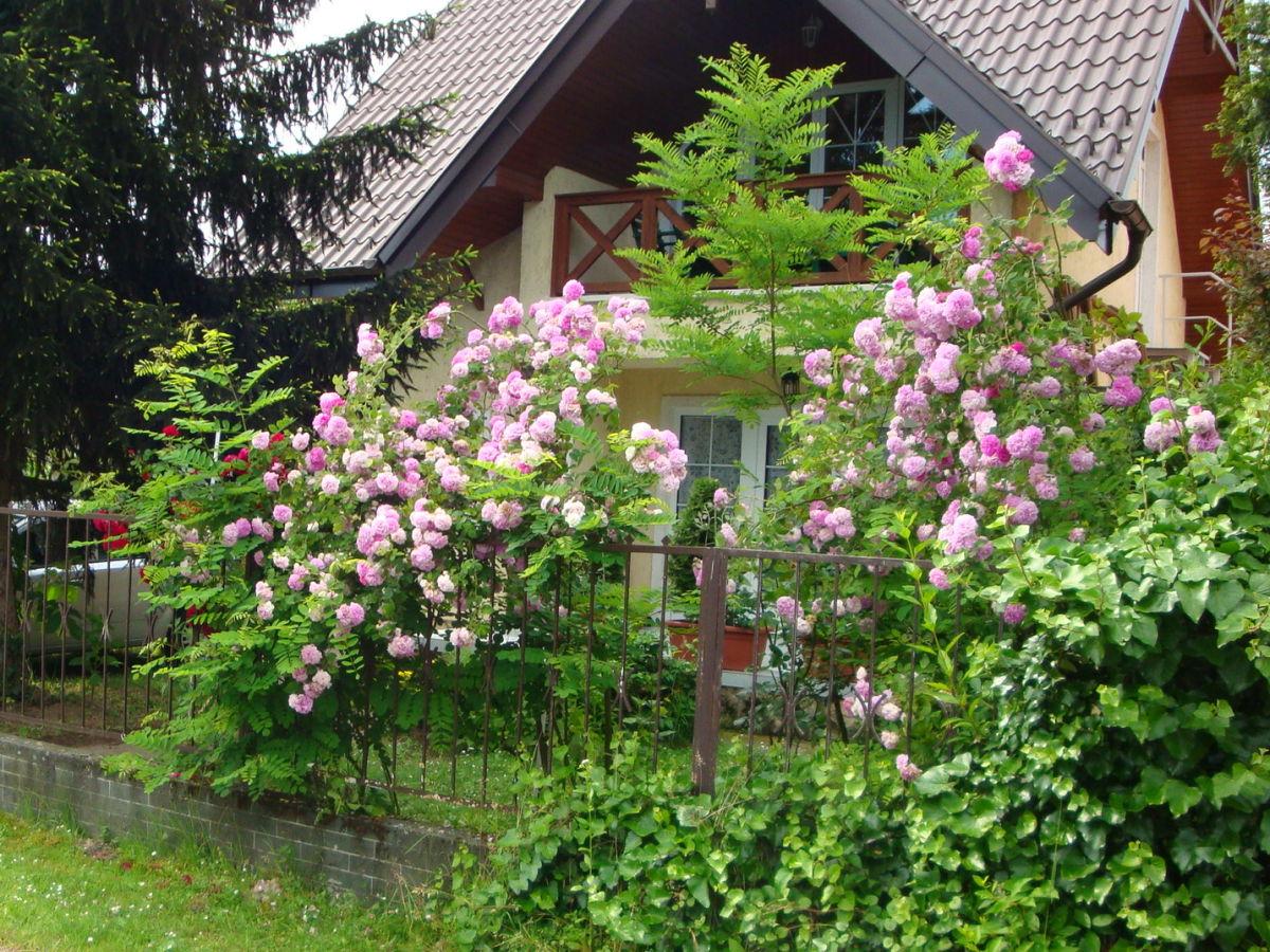 Ferienwohnung krist balatons dufer sz nt d frau maria for Haus mit garten