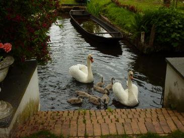 Ferienwohnung Villa Schneider direkt am Wasser