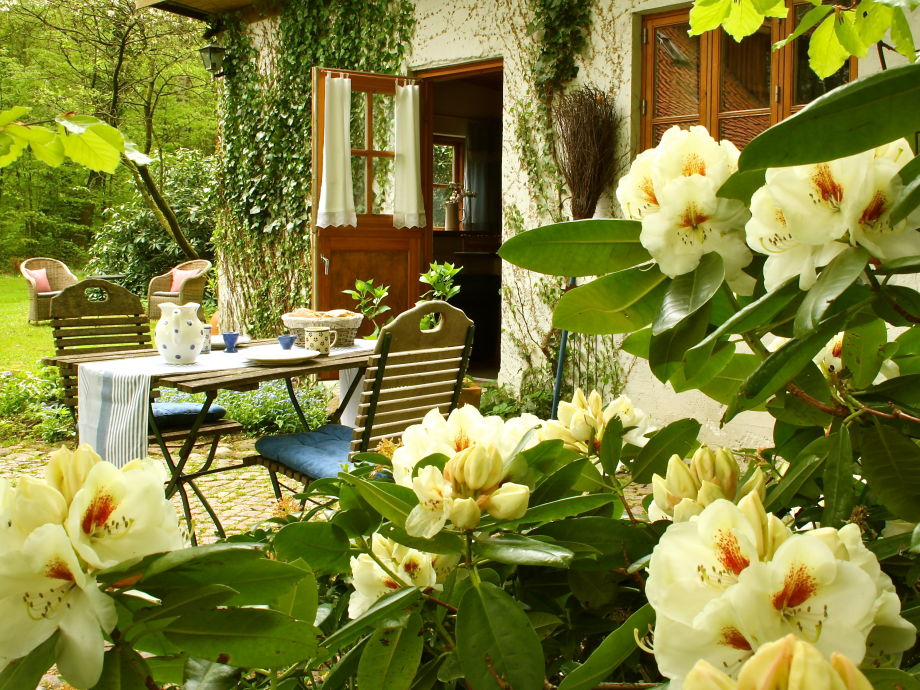 Terrasse mit Frühlingsrhododendron