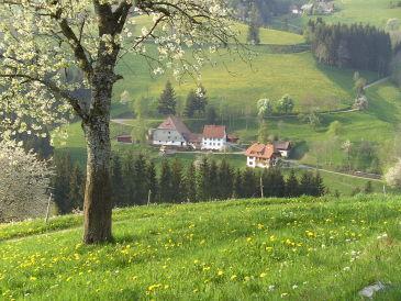 Bauernhof Dischenhof