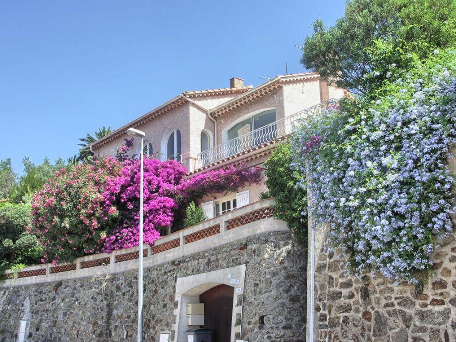 Die Ferienwohnung liegt im Erdgeschoss der Villa