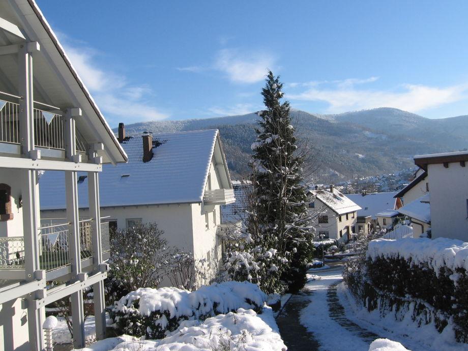 Weisenbach im Winter