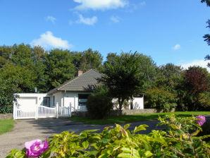 Ferienhaus Haus Ackerpflanze